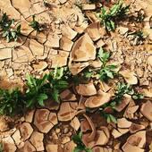 🌵 Sol craquelé dans le désert marocain ! Cette photo a été prise sur la route du Désert de sable à #chegaga, un lieu magique et chargé d'histoires ! • • • • • Pics by @maisonsnomades  #nomadlifestyle #nomadliving #ergchegaga #chegaga #roadtripmaroc #treasurehunter #maisonsnomades
